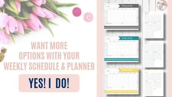 Weekly Schedule and Planner additional color options for purchase.