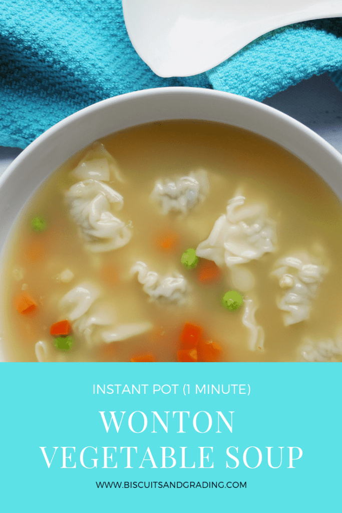 Wonton Vegetable Soup from Biscuits and Grading