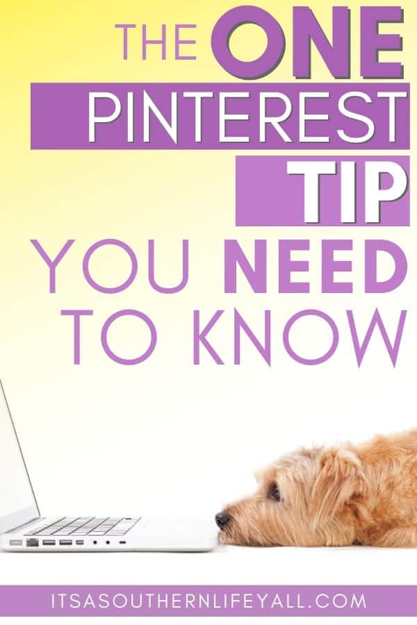 Cute dog looking at a laptop with the one Pinterest tip you need to know text overlay