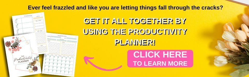 Productivity Planner button slider